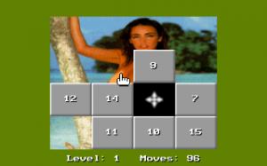 15 Move Hole Puzzle