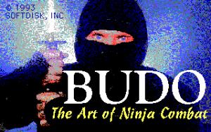 Budō: The Art of Ninja Combat!