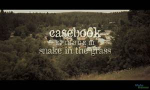 Casebook: Episode III - Snake in the Grass