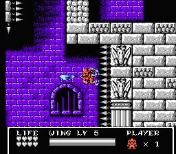 Gargoyle\'s Quest II: The Demon Darkness