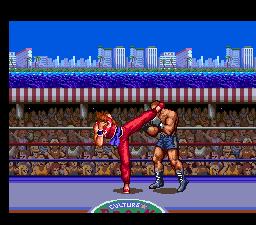 Golden Fighter - Hiryu No Ken S
