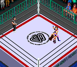 Super Fire Pro Wrestling Queen\'s Special