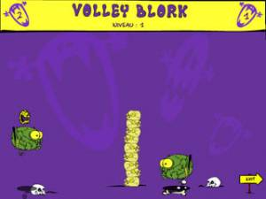 Volley Blork