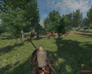Mount &amp; Blade