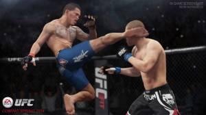 A Sports UFC