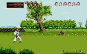Ninja Rabbits