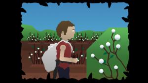 My cotton picking life