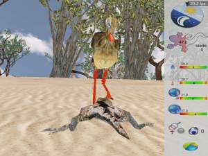 Calangos, an educational game for learning and teaching of ecology